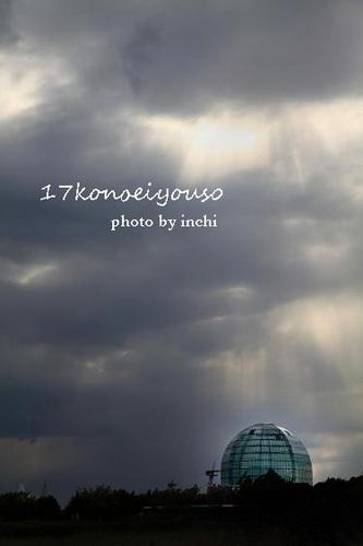 Img_6424